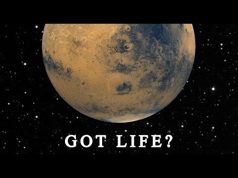 The Search for Life on Mars