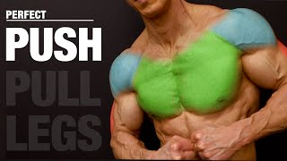 The PERFECT Push Workout (PUSH | PULL | LEGS)
