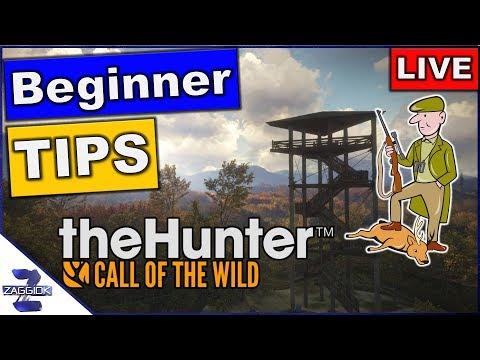Beginner Tips TheHunter Call of the Wild