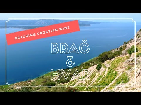 Cracking Croatian Wine in Brač and Hvar (Dalmatia)