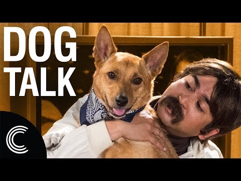 The Dog Whisperer with Farley Archer: Doggy Depression