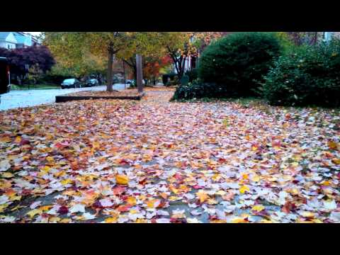 The fall in Delaware