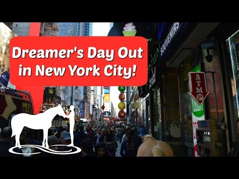 Dreamer's Day Out in New York City