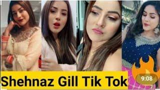 Shehnaz gill funny video   tik tok virals act    bigg boss 13   show host   salman khan  