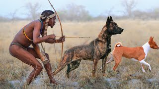 These Are 10 Most Ancient Dog Breeds