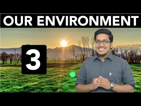 Natural Resources: Our Environment (Part 3)