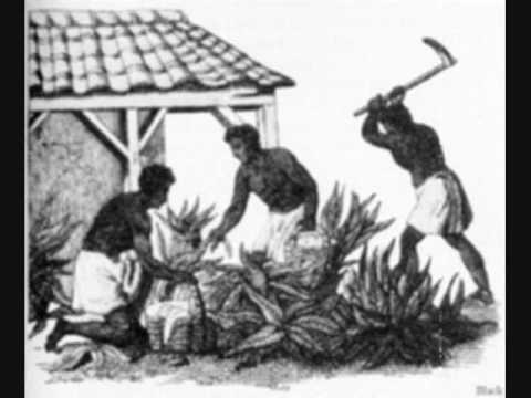 mistreatment of slaves An elderly and hardworking house slave (slaves who serviced the big house who's jobs included domestic chores, child care, food preparation, even bookkeeping and managing of other slaves) were treated considerably better than insolent field slaves.