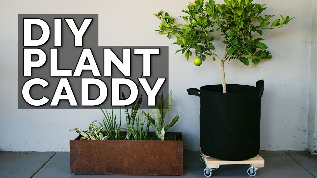 Build a DIY Plant Caddy for Under $30