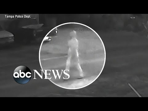 Police searching for apparent serial killer terrorizing Tampa neighborhood