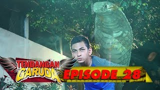 Video Tendangan Cobra VS Tendangan Garuda! SERU BGT! - Tendangan Garuda Eps 28 download MP3, 3GP, MP4, WEBM, AVI, FLV Agustus 2018