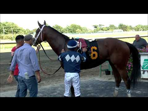 video thumbnail for MONMOUTH PARK 8-11-19 RACE 12