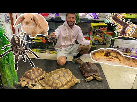 THE SMALLEST & CRAZIEST PET SHOP EVER! SO MANY DIFFERENT PETS!