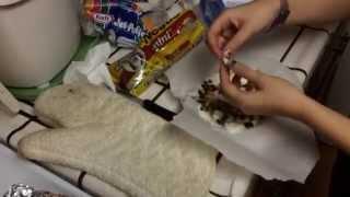 Diy S'mores Cracker Cookies