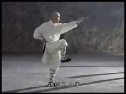 少林大罗汉拳 Shaolin da luohan quan - Shaolin Arhat Boxing Combat technique