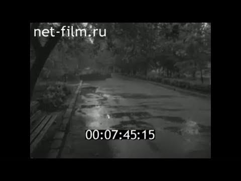 1986г. Детский парк. Саратов