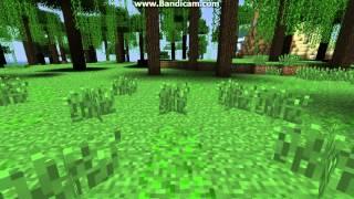 Minecraft(2 часть )