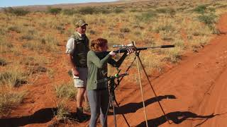 South Africa luxury Hunting Safari   Northern Cape