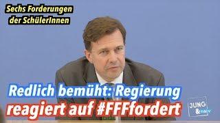 """Bundesregierung reagiert auf die Forderungen von """"Fridays For Future"""""""