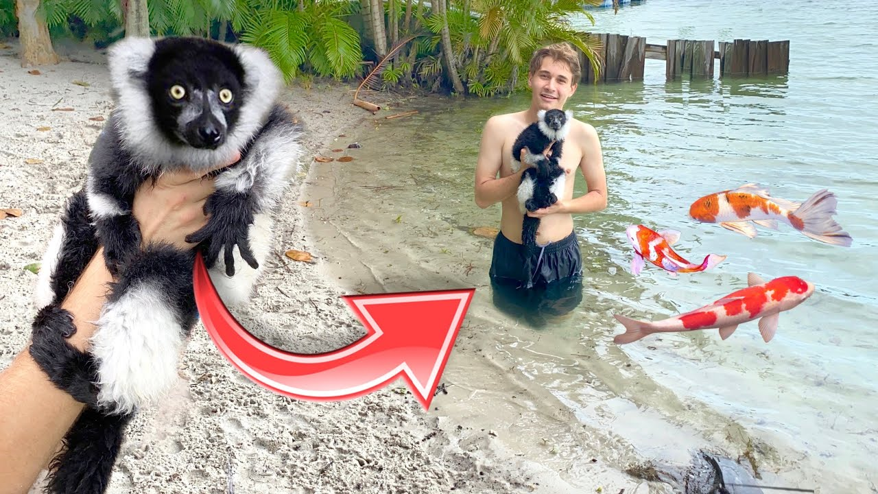 TAKING MY MONKEY TO THE BEACH FOR THE FIRST TIME ! WILL HE SWIM ?!
