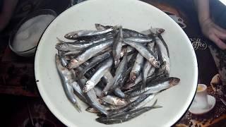 Как Вкусно и Быстро Засолить Рыбу.
