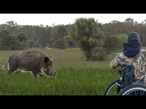 PARAPLEGIC Who Talks Like Wild Animals!! Josh Carney {Catch Clean Cook} Awesome Wild Boar Hunt