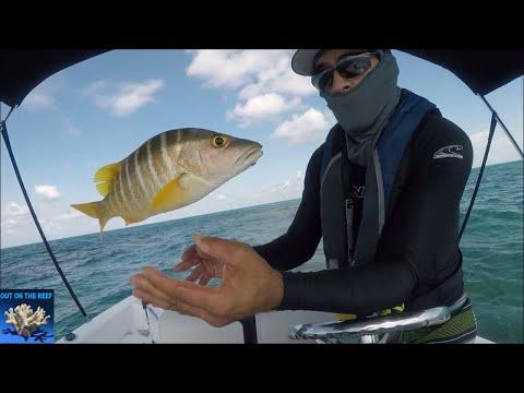 Bermuda Triangle Effect Flying Fish Solo Survival Fishing Miami To Bimini