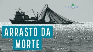 A destruição da pesca de arrasto no Brasil