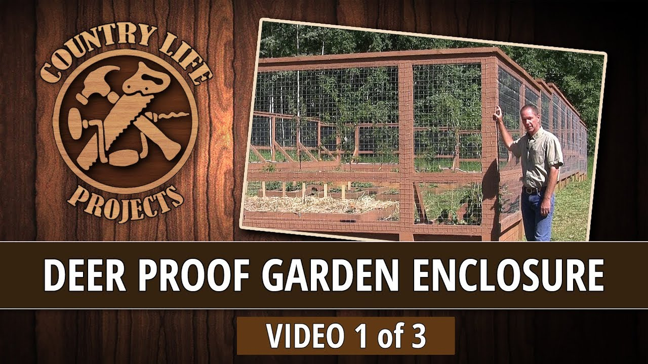 Build A Deer Bear Proof Garden Fence With Raised Beds Video 1