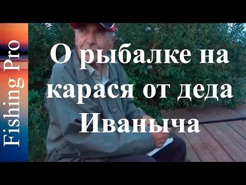 О рыбалке на карася от деда Иваныча