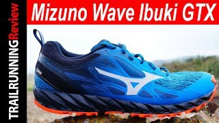 Mizuno Wave Ibuki GTX Review
