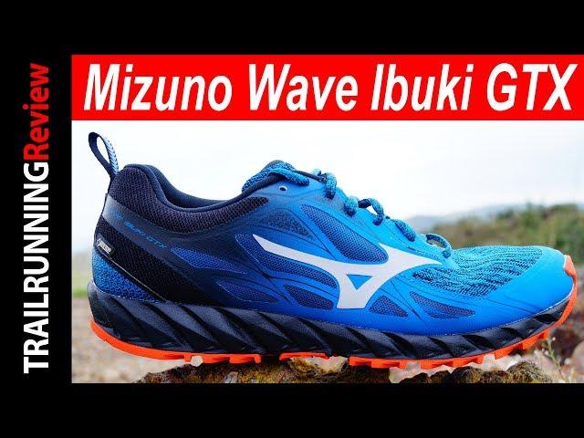 mizuno wave ibuki gtx