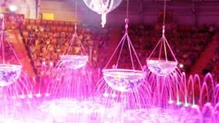 """Цирк на воде """"SHEVCHENKO Show"""""""