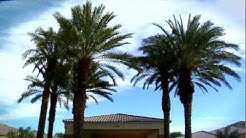Mission Hills Senior Living - Rancho Mirage, CA