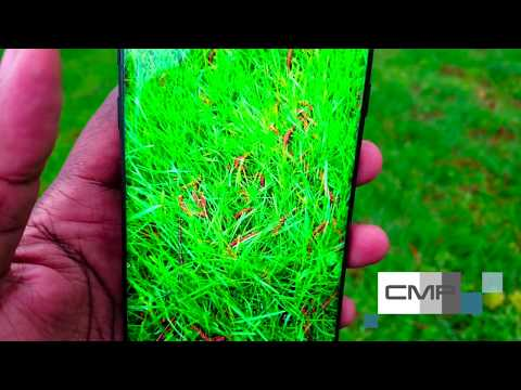 Infinity Display Samsung galaxy s8 review, Almost to Infinity explained