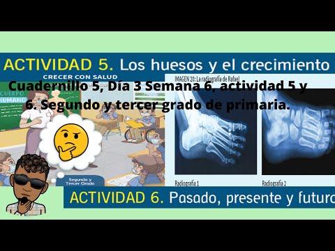 Download Cuadernillo 5, Día 3 Semana 6, actividad 5 y 6. Segundo y tercer grado de primaria.