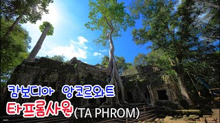 (외국여행기)캄보디아 …