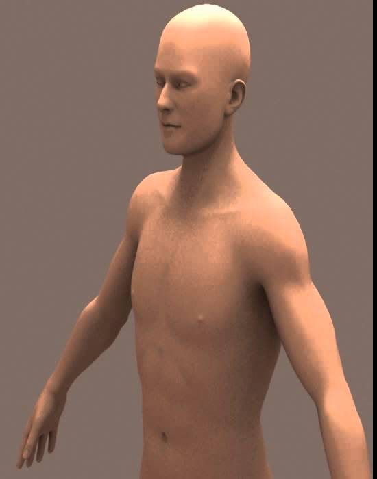 3D Model of Nude Male Body 01 Review - YouTube