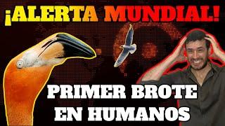 ¡ALERTA MUNDIAL!: PRIMER BROTE DE GRIPE AVIAR H5N8 EN HUMANOS| ¿NUEVA PANDEMIA?
