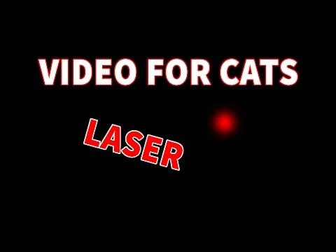 Videos For Cats To Watch Laser - Videos für Katzen - cat games