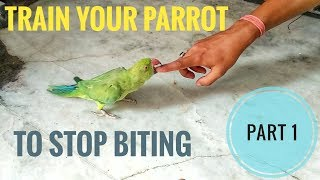 Part 1 - How to Train a Parrot…