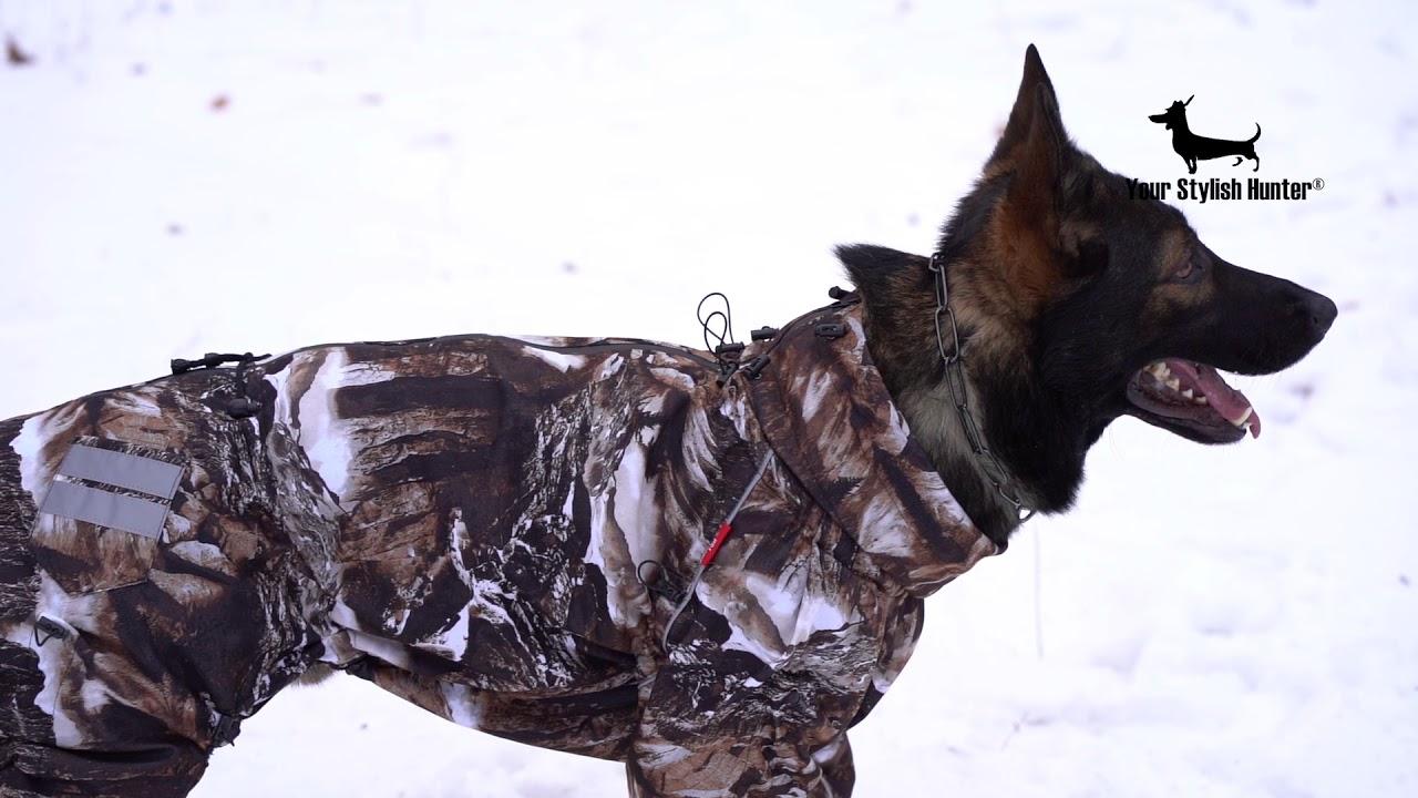 Что одеть собаке? Одежда на собак больших и средних пород от производителя.