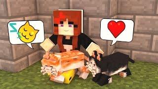 VOU TER MUITOS GATINHOS! - Minecraft Build Battle (Servidor Pirata)
