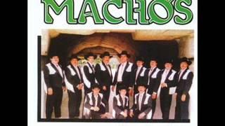 Video Banda Machos-La Cosita download MP3, 3GP, MP4, WEBM, AVI, FLV Juli 2018