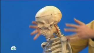 видео Врач остеопат: кто это и что он делает?