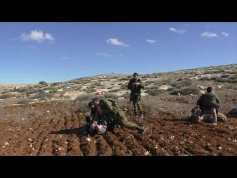 Settler From Susya Attacking Soldiers