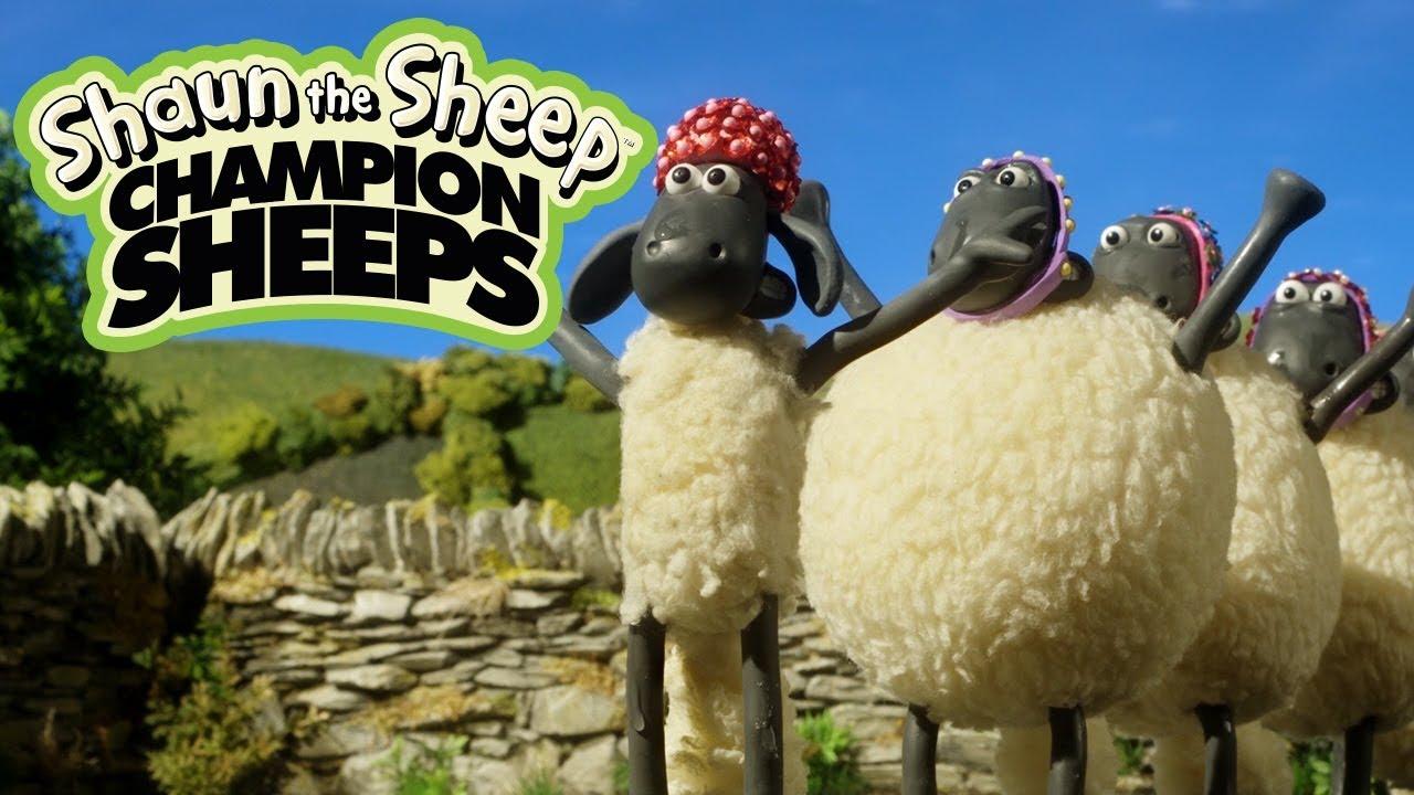 Bơi nghệ thuật | Championsheeps | Những Chú Cừu Thông Minh [Shaun the Sheep]