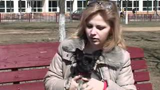 Редкие породы собак-2