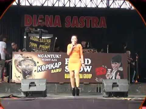 Anik Arnika Rambute Teles