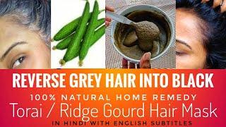 REVERSE GREY HAIR to BLACK   Ridge gourd / Tori / Torai Hair mask   100% Natural remedy.
