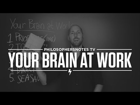 PNTV: Your Brain at Work by David Rock